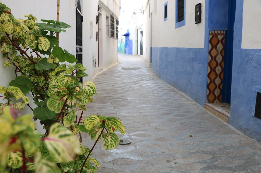 Das Marokko-ABC: Die wichtigsten Marokko Merkmale im Überblick